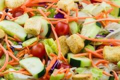 Close-up de uma salada fresca do jardim Imagens de Stock Royalty Free