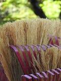 Close-up de uma vassoura e de um ancinho imagem de stock