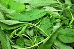 Close up de vegetais cortados fotos de stock royalty free