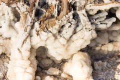 Close Up of Dead Sea Salt Stock Images