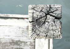 Close up Decay wood pole at waterside.  Royalty Free Stock Images