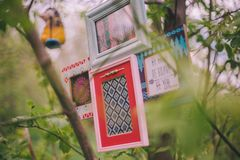Close-up decorative photo frames hang on a tree branch royalty free stock photos