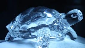 Close up decorativo da parte de Crystal Tortoise vídeos de arquivo
