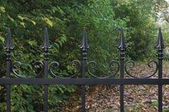 Close up decorativo preto forjado da cerca do ferro forjado, fundo outonal das árvores, cena detalhada horizontal caída do parque foto de stock
