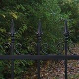 Close up decorativo preto forjado da cerca do ferro forjado, fundo outonal das árvores, folhas caídas, grande cena horizontal do  imagem de stock