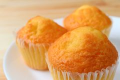 Close-up of Delectable Madeleine Cupcakes Served on White Plate, Selective Focus. And Blurred Background royalty free stock photo