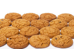 Close up of delicious chocolate chip cookies Stock Photos