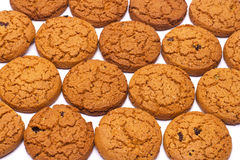 Close up of delicious chocolate chip cookies Royalty Free Stock Images