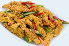 Close-up of delicious crispy fried chicken breast strips on white plate, on a white table with pepper, cucumbers and carrots, easy. Recipe for outdoor picnic or royalty free stock photography