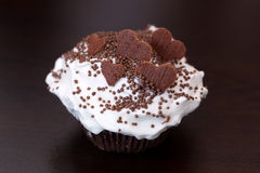 Close up of delicious holiday homemade chocolate chip cupcake Royalty Free Stock Photo