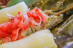 Close up of delicious typical amazonia food, fish cooked in a leaf with yucca and plantain, with salad of tomato and Royalty Free Stock Photos