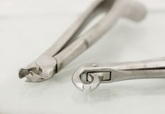 Close up of dental extraction forceps Royalty Free Stock Photos