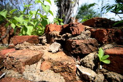 Close up of destroyed brick walls Royalty Free Stock Photos