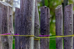 Close up detail arrangement with pillars and stretched wire Royalty Free Stock Photo