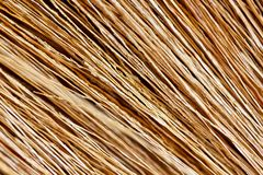 Close up detail of a broom texture Stock Photography
