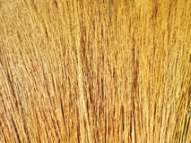 Close up detail of a broom texture Royalty Free Stock Image