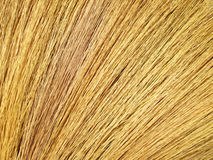Close up detail of a broom texture. Grunge texture of dry grass Royalty Free Stock Photography