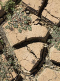 Close up detail of cracked ground. Of an empty dam during the dry Stock Image