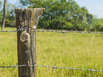 Close up detail of farm fence post with barbed wire and grass background Stock Image