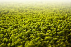 Close up or detail of green carpet Royalty Free Stock Photography