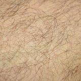 Close up detail of human skin with hair. Mans hairy leg.  Stock Photos