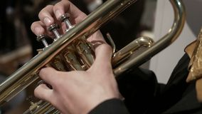 Mariachi trumpet player stock footage