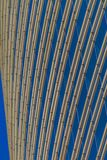 Downtown sky scraper stock image