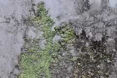 Close up detailed view on plastic foil and plastic surfaces in high resolution. Found in northern europe stock photography