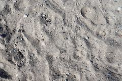 Close up detailed view on sandy ground surfaces in high resolution. Found in germany stock photo