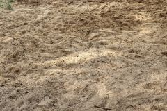 Close up detailed view on sandy ground surfaces in high resolution. Found in germany stock photos