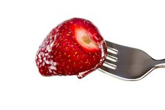Sweet Strawberry with Fork Stock Photos
