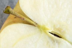 Close up details of an apple fruit Stock Image