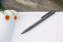 Close-up of diary and pen lying on the grass. Romanticism, their thought royalty free stock image