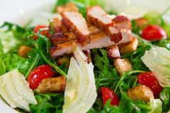 Close-up die van koude salade met varkensvleesvlees is ontsproten Stock Afbeelding