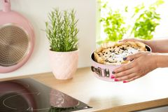 Close-up die van meisjes` s handen een bakselvorm met een cake boven countertop in een keuken houden stock foto's