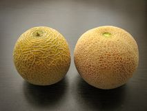 Close up of different fresh melons on black wooden table in spring. White melon and cantaloupe royalty free stock image