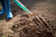 Work in a garden - Digging Spring Soil With Spading fork. Close up of digging spring soil with blue shovel preparing it for new sowing season royalty free stock photography