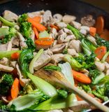 Close-up on chicken stir-fry in cast iron skillet Royalty Free Stock Image