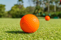Close up the dirt golf ball on grass with blurred green golf cou Stock Photo