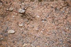Dirt soil texture. Close up dirt soil texture royalty free stock images