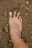 Close up of dirty feet Royalty Free Stock Images