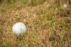 Close up dirty golf ball Royalty Free Stock Photo