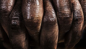Close up of a dirty worker hands Royalty Free Stock Photography