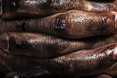 Close up of a dirty worker hands Royalty Free Stock Photo