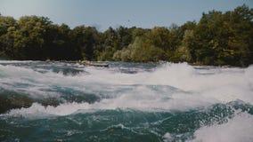 Close-up disparado de apressar o rio rápido perigoso, a espuma em ondas rápidas da água do Niagara e árvores verdes no banco enso vídeos de arquivo