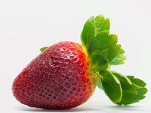 Close up disparado de morangos frescas Imagens de Stock