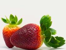 Close up disparado de morangos frescas Imagem de Stock Royalty Free