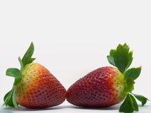 Close up disparado de morangos frescas Fotografia de Stock