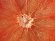Close-up of a divided orange grape fruit. – to be used for background Royalty Free Stock Photo