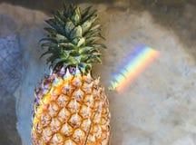 Close up do abacaxi fresco com luz de prisma do arco-íris fotografia de stock royalty free